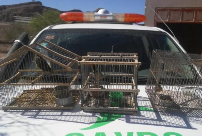 Nuevo ataque a la fauna terminó con varias actas en Caucete