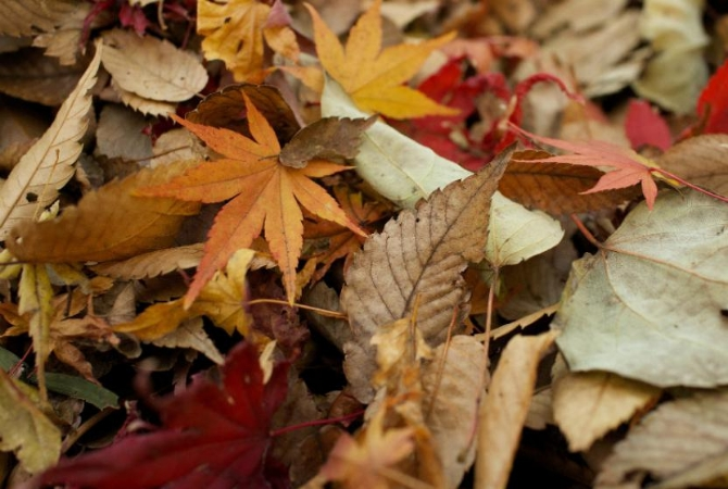 ¿Por qué, en 2019, el otoño comienza el 20 de marzo?