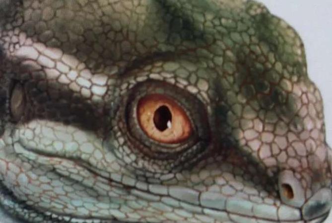 Encuentran en Ischigualasto al abuelo de lagartos y serpientes
