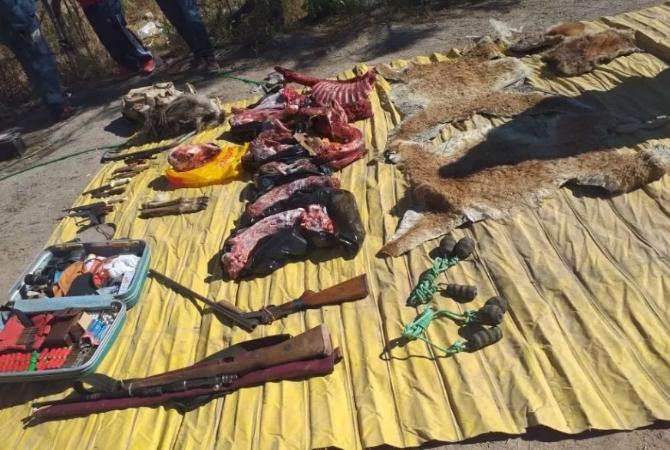 Dos detenidos en Jáchal por cazar guanacos