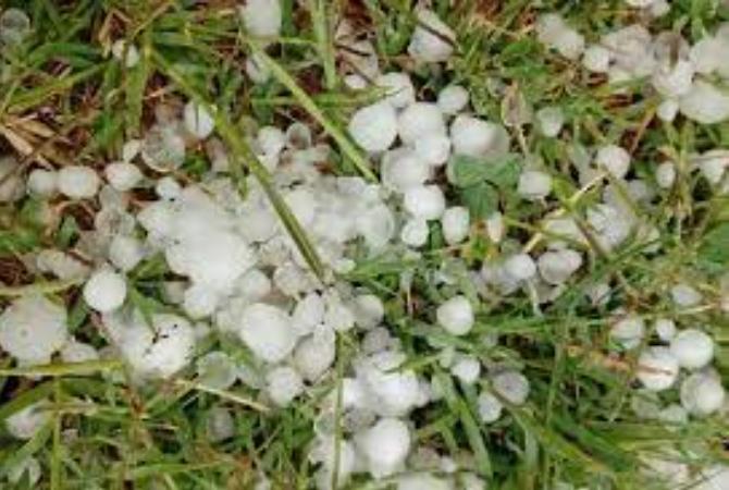 Nación declaró la emergencia agropecuaria para cuatro departamentos sanjuaninos